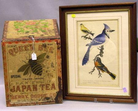 Queen Bee Japan Tea Lithographed Retail Bin and Walnut Framed Bird Print