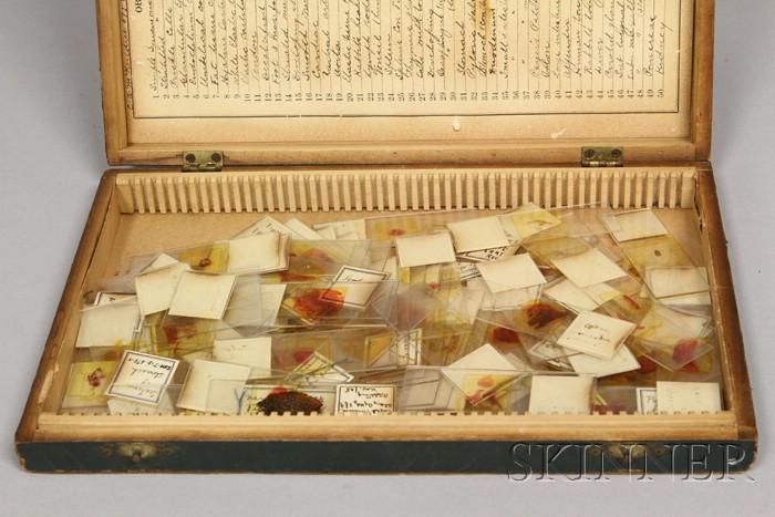 Box of Prepared Medical Microscopy Slides