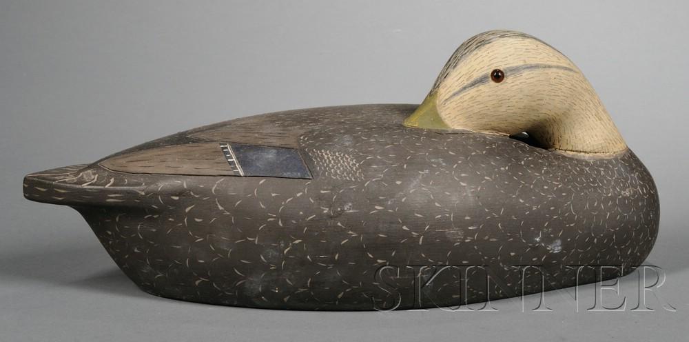 Sleeping Black Duck Decoy