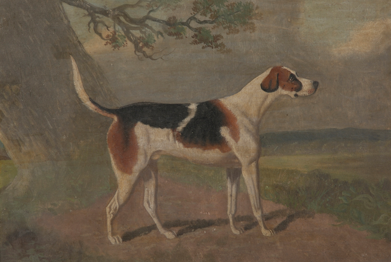 Anglo/American School, 19th Century Style      Portrait of a Hunting Dog