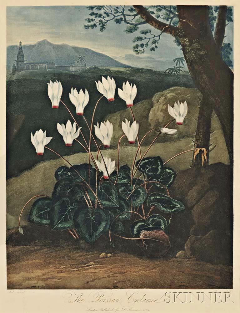 Thornton, Robert John (c. 1768-1873) Two Botanical Prints.