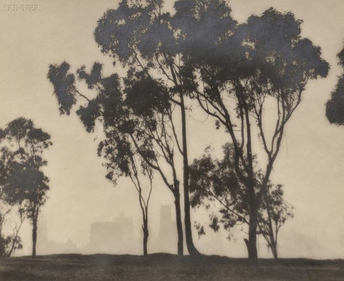 William E. Dassonville (American, 1879-1957)      Eucalyptus Trees and San Francisco Skyline