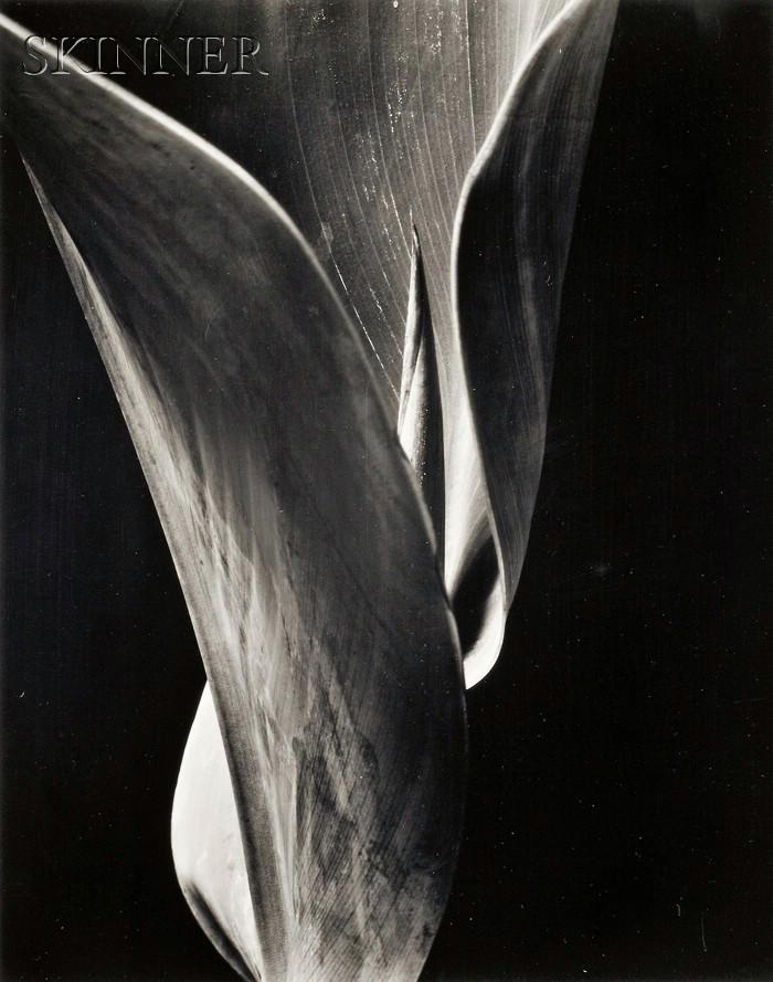 Willard van Dyke (American, 1906-1986)      Easter
