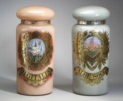 Pair of Glass Pharmacy Jars