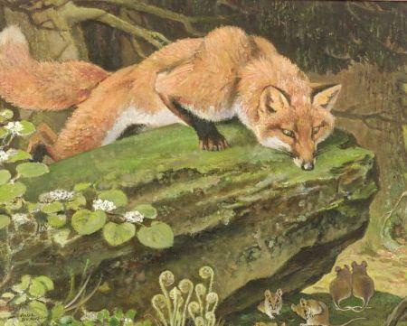 Paul Bransom (American, 1886-1979)  Red Fox