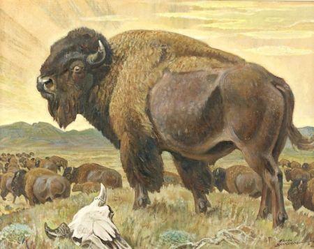 Paul Bransom (American, 1886-1979)  Bison