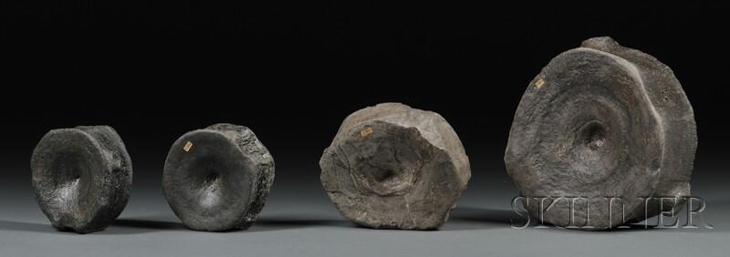 Four Ichthyosaur Dorsal Bones