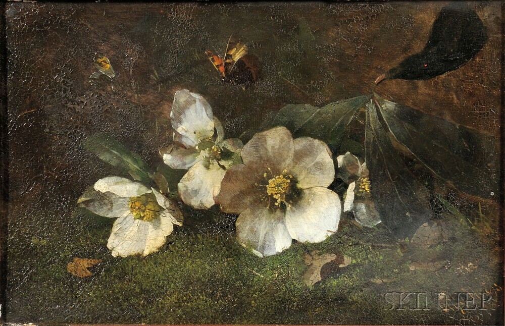 Continental School, 19th Century      White Blossoms and Butterflies on a Mossy Bank