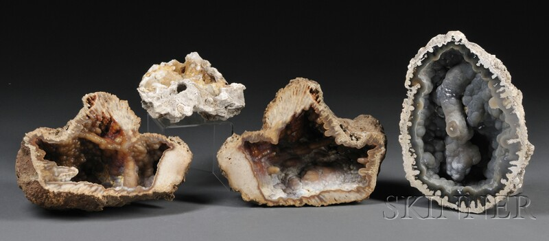 Four Agatized Fossil Coral