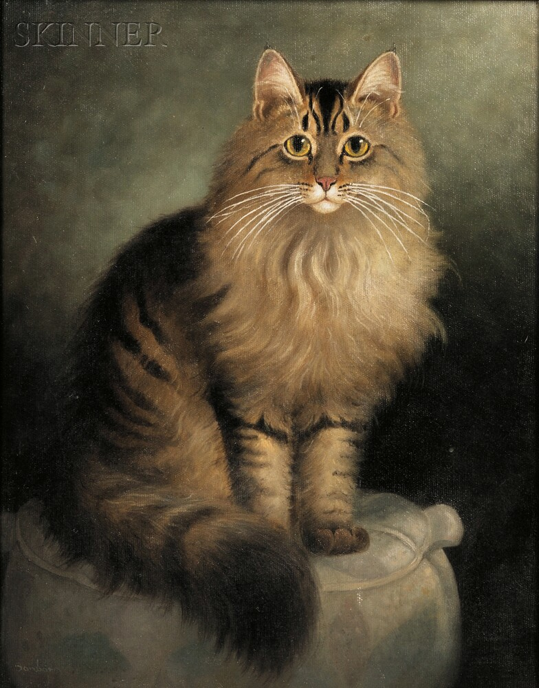 Percy A. Sanborn (American, 1849-1929)      Portrait of a Maine Coon Cat