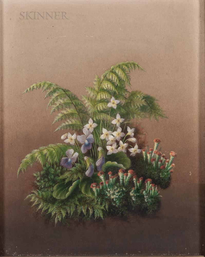 American School, 19th Century      Spring Woodland Flowers and Ferns