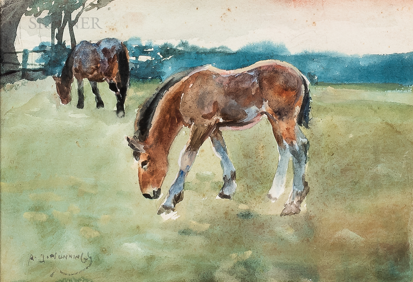 Sir Alfred Munnings (British, 1878-1959)      A Foal Grazing, Another Horse Behind