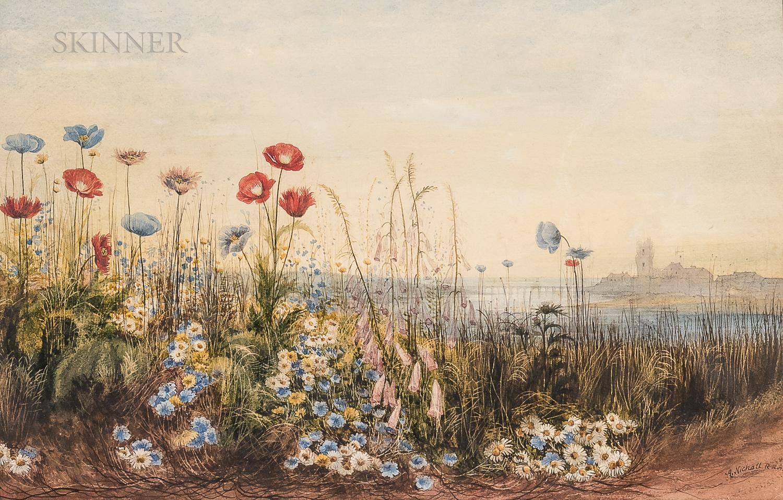 Andrew Nicholl (Irish, 1804-1886)      Wildflowers along the Malahide Estuary