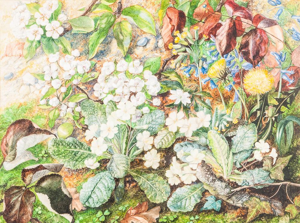 William Cruickshank (British, 1836-1917)      Spring Flowers