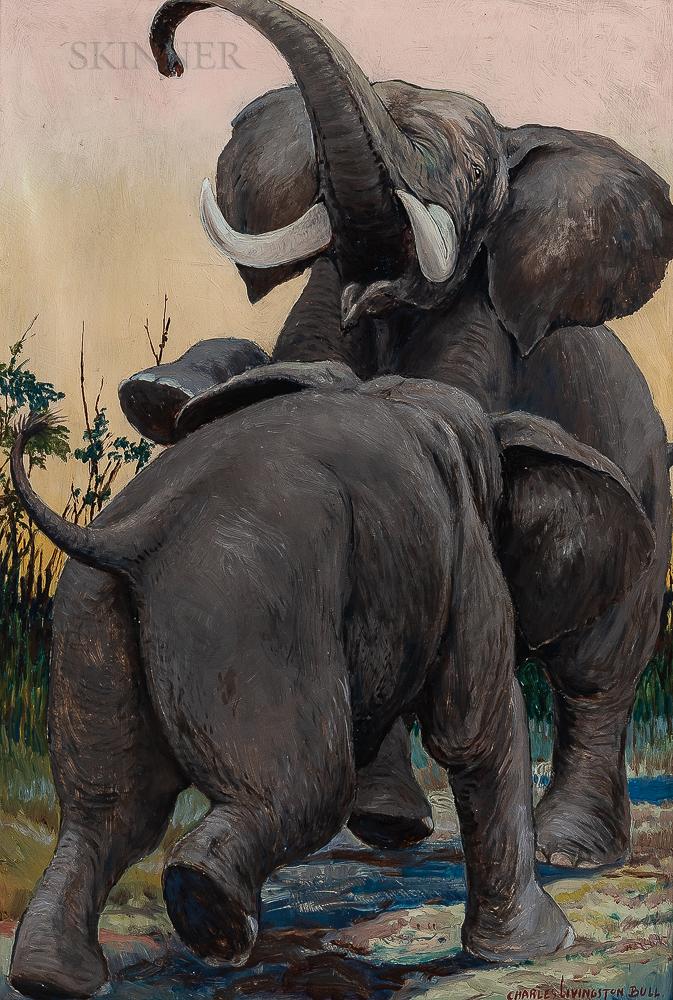 Charles Livingston Bull (American, 1874-1932)      Elephants