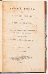 Sowerby, James (1757-1822) English Botany; or, Coloured Plants, with their Essential Characters, Synonyms, and Places of Growth.