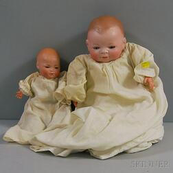 Two Bisque Baby Dolls: Bye-Lo and SHPB