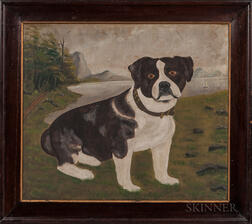 American School, 19th Century      Portrait of a Black and White Dog
