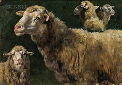 School of Rosa Bonheur (French, 1822-1899)      Studies of Sheep