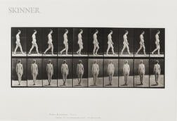 Eadweard Muybridge (British, 1830-1904)      Plate 15 (Nude Woman Walking)