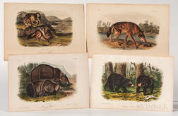 Audubon, John James (1785-1851) Thirty Octavo Quadruped Plates, 1849-1854.