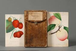 (Agriculture, Fruit and Trees)