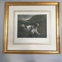 Two Framed Engravings of Dogs