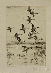 Frank Weston Benson (American, 1862-1951)      Pintails Passing