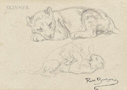 Rosa Bonheur (French, 1822-1899)      Studies of the Artist's Lion Cub, Fathma