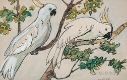 Jane Peterson (American, 1876-1965)      Two Cockatoos