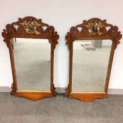 Pair of Tiger Maple and Parcel Gilt Chippendale-style Mirrors