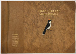 Brasher, Rex (1869-1960) Birds and Trees of North America.