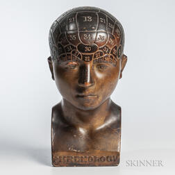 19th Century Plaster Phrenology Bust