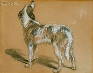 Attributed to Sir Edwin Landseer (British, 1802-1873)    Sketch of a Dog