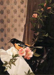 Stow Wengenroth (American, 1906-1978)      Still Life with Oriole and Blossoms.