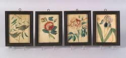 Four Hand-Colored Lithographic Floral and Bird Prints
