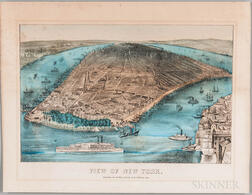 Stinson, George (fl. circa 1870) View of New York.