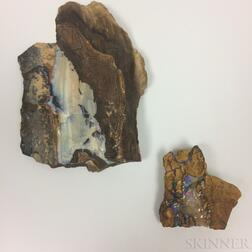 Two Opal Specimens
