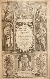 Gerard, John (1545-1611) The Herball or Generall Historie of Plantes