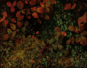 William Hough (British, 1819-1897)      Blackberries and Ivy on a Mossy Bank