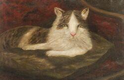 American School, 19th Century  Folk Portrait of a Cat