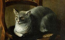 American School, 19th Century  Folk Portrait of a Gray Tabby