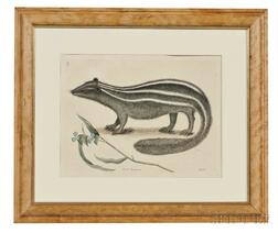 Catesby, Mark (1679-1749) Five Natural History Prints.