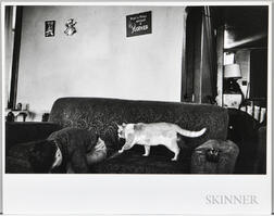 Walker Evans (American, 1903-1975)  Boy and Cat on Couch, Made for the Fortune Magazine Article People and Places in Trouble (Publish