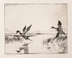 Frank Weston Benson (American, 1862-1951)      Two Impressions of Pair of Pintails