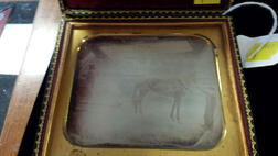 Quarter-plate Daguerreotype of a Horse-drawn Sleigh