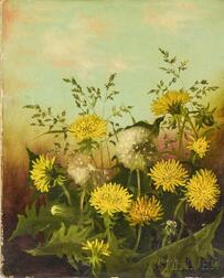 American School, 19th Century       Still Life with Dandelions.