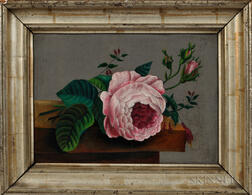 American School, 19th Century      Still Life Painting of a Pink Rose