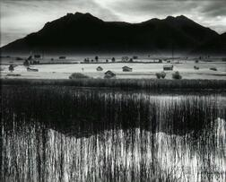 Brett Weston (American, 1911-1993)      Landscape, Germany