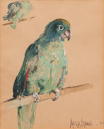 Matilda Browne (American, 1869-1947)      Parrot on a Perch